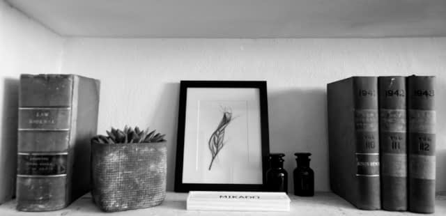 framed leaf charcoal drawing on a shelf design